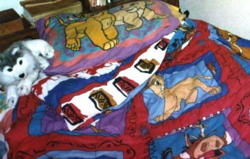 brightly colored Lion King bed sheets, with a wolf stuffy by the pillow.